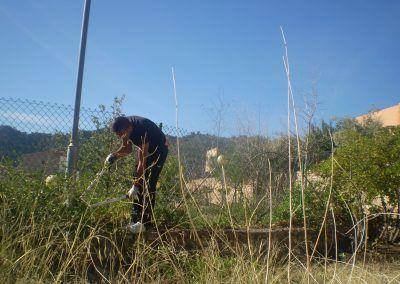 Aprovechamientos agrícolas y forestales